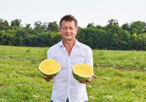 Кубанский фермер Игорь Лихосенко ставит рекорды на своей бахче