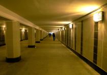 Столичная школьница искусала маньяка в подземном переходе