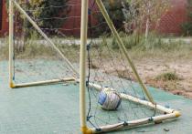 Футбольные ворота,  упавшие на школьника в Москве, были не закреплены
