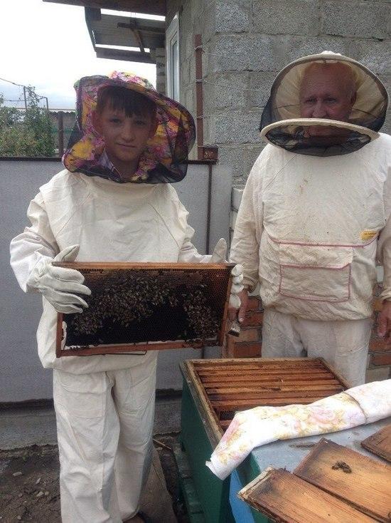 Кубанский школьник держит 25 тысяч пчел и мечтает о большой пасеке