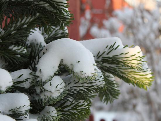 На Кубань пришла зима
