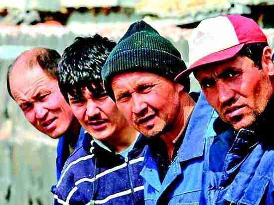 Власти  Кубани призывают к ужесточению миграционного законодательства