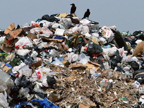 свалки свалки мусора росприроднадзор охрана окружающей среды