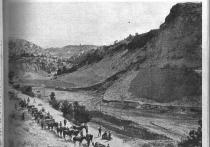 В ноябре 1914-го на Кубань пришла война